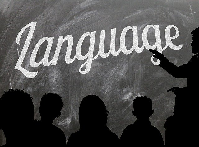 How and why I have Bilingual children